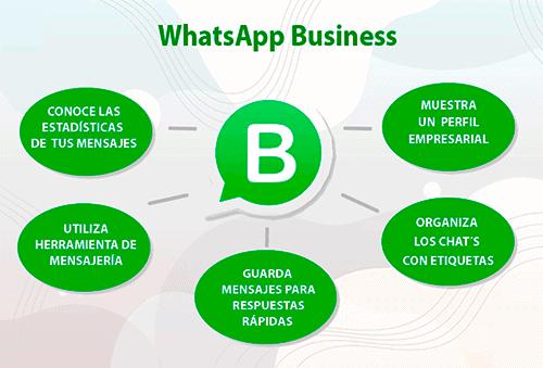 ¿Has escuchado hablar de la Aplicación WhatsApp para Negocios?